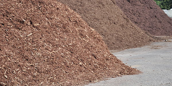 Choosing and Installing the Right Type of Mulch