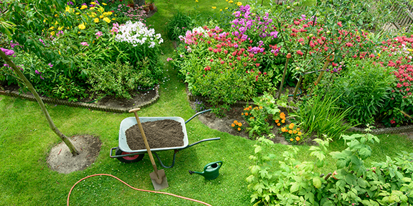 How to Create and Design an Island Garden Bed