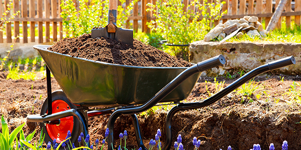 5 Must-Have Landscaping Tools for Amateurs & Professionals