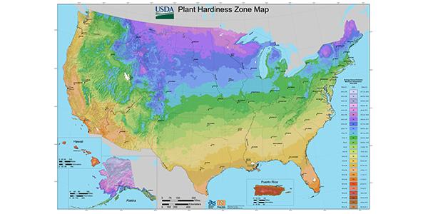 Understanding Zone Maps for Gardening