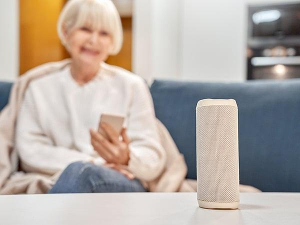 Voice Assistants Connect Older Adults
