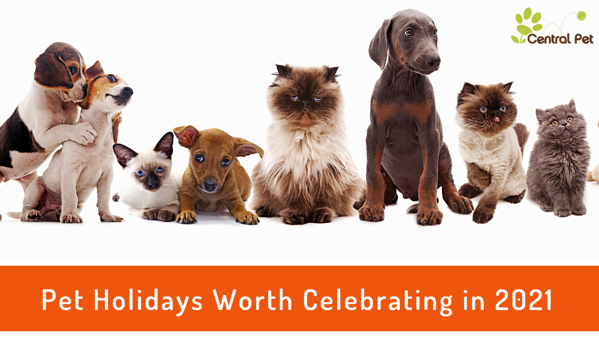 2021 pet holidays that are worth celebrating