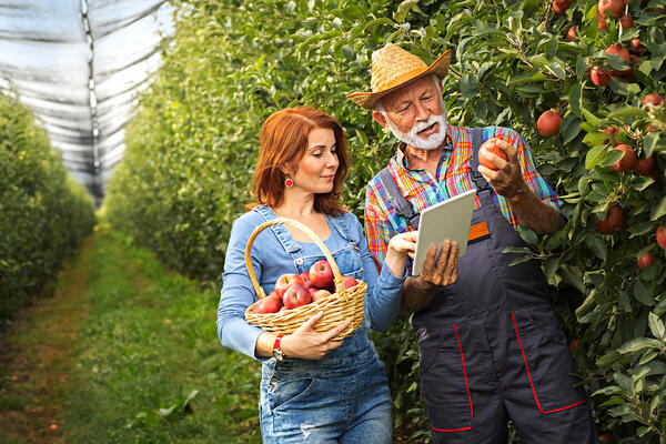 How can a food ERP solution build future business strategies?