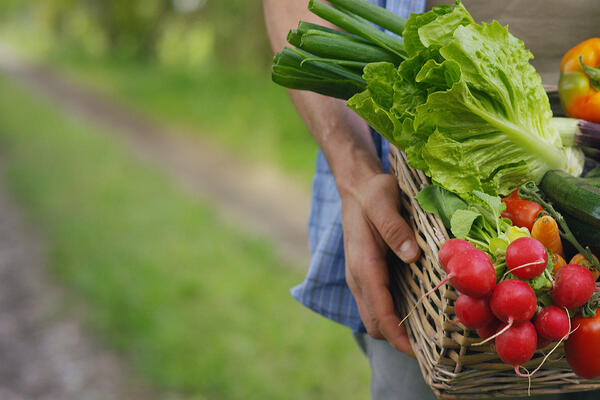 How technology, data and analytics are shaping the future of produce