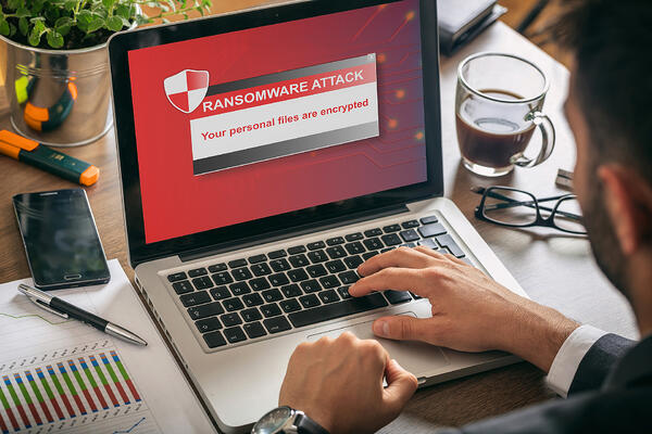 Vulnerability Assessment - Don't neglect this step to protect your company