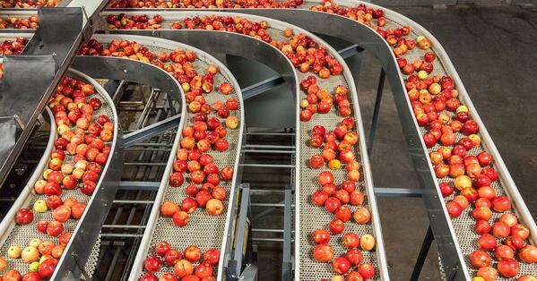 To infinity and beyond: 6 food industry technology innovations to consider