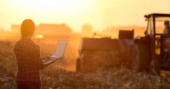 From manual processes to a digital future: 5 tips to help your food business move forward