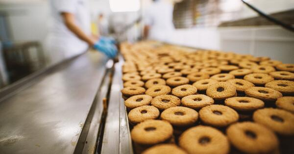 Everything you need to know about food ERP systems