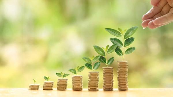 Det er når ERP-løsningen er live, at gevinsterne skal høstes