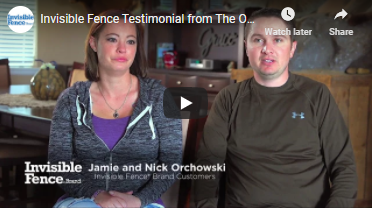 Invisible Fence® Brand Testimonial: Pet Containment for 3 Dogs