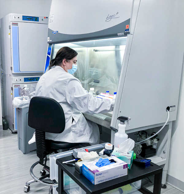 female scientists in research lab working under a fume hood