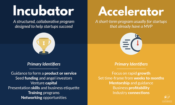 incubator-and-accelerator-infographic