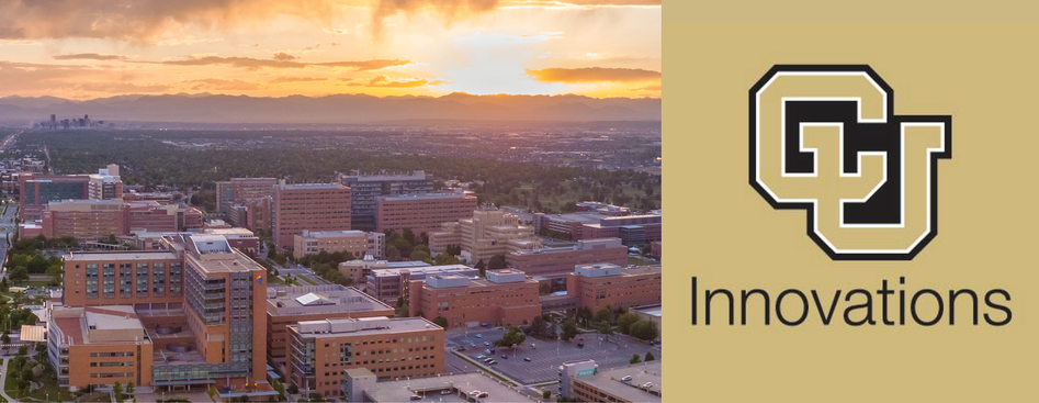 Inside CU Innovations: An Interview with Executive Director, Kim Muller