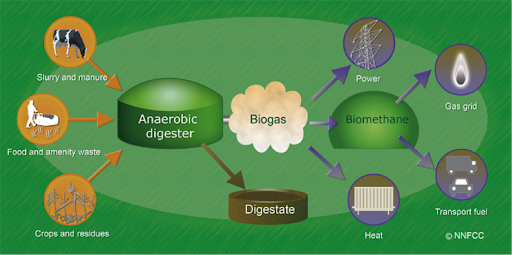 Biomass: The Benefits of Anaerobic Digesters