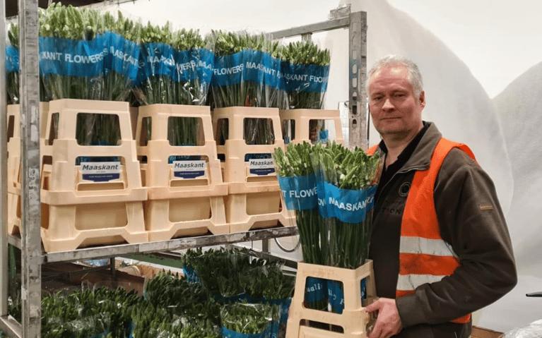 Import agent Jeroen Vrolijk blij met FreshPortal EAB
