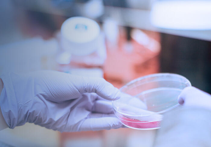 Insight Alert: Is M&A Craze Around The Cell Gene Therapy Space Creating The First Global Healthcare Bubble?
