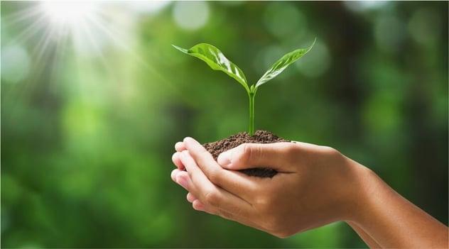 ¡Cuando cuidas el medio ambiente elevas tu calidad de vida!