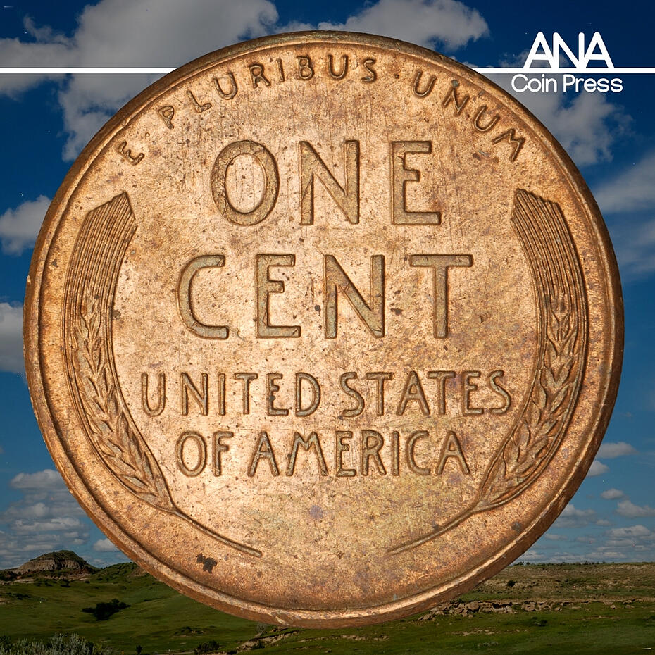 Pros and Cons of Collecting US Coins