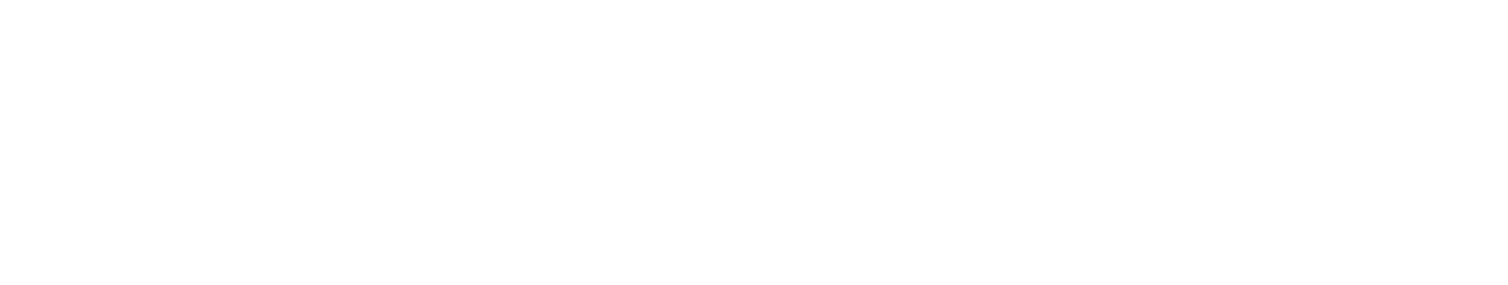 New_Zealand_Post_Logo_White
