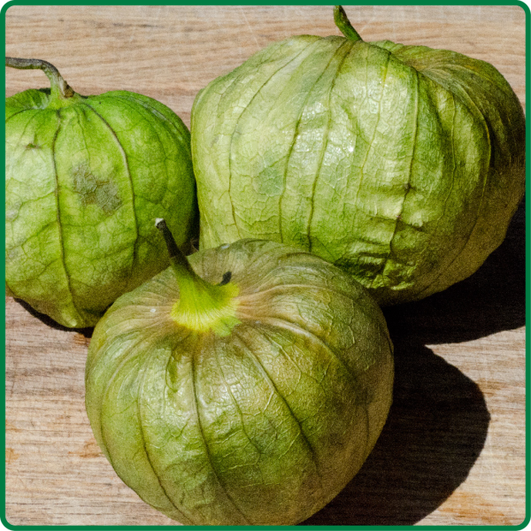 Tomatillos from Harmony Valley Farm Viroqua, Wi. Fresh and Local Produce at the Viroqua Food Coop