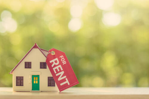 Maximise Profit on Your Rental Property with these 10 Tips