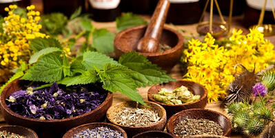 Seven-Common-Culinary-Herbs-and-their-Medicinal-Uses