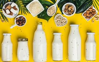 How-to-Make-and-Where-to-Find-Dairy-Free-Milk-Alternatives