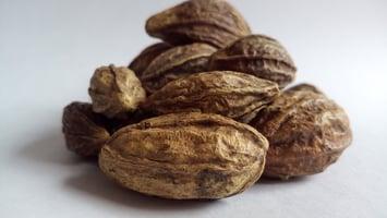 haritaki-a-healthy-ayurvedic-supplement-for-digestion