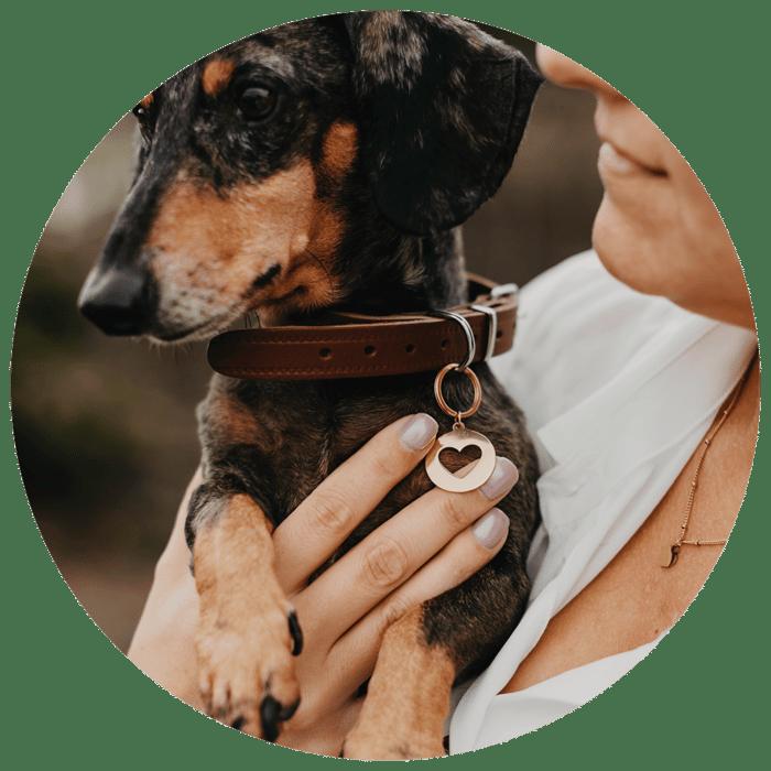 Website Cirkel + Jewellery