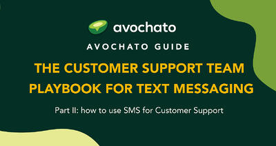 The Marketing Team's Text Messaging Playbook - part II | Avochato
