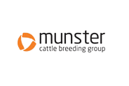 munster-cattle-removebg-preview