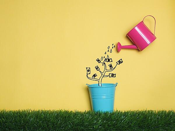 watering can growing investment