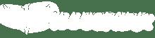 illuspark-logo-white