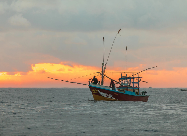 The ultimate guide to buying a fishing boat