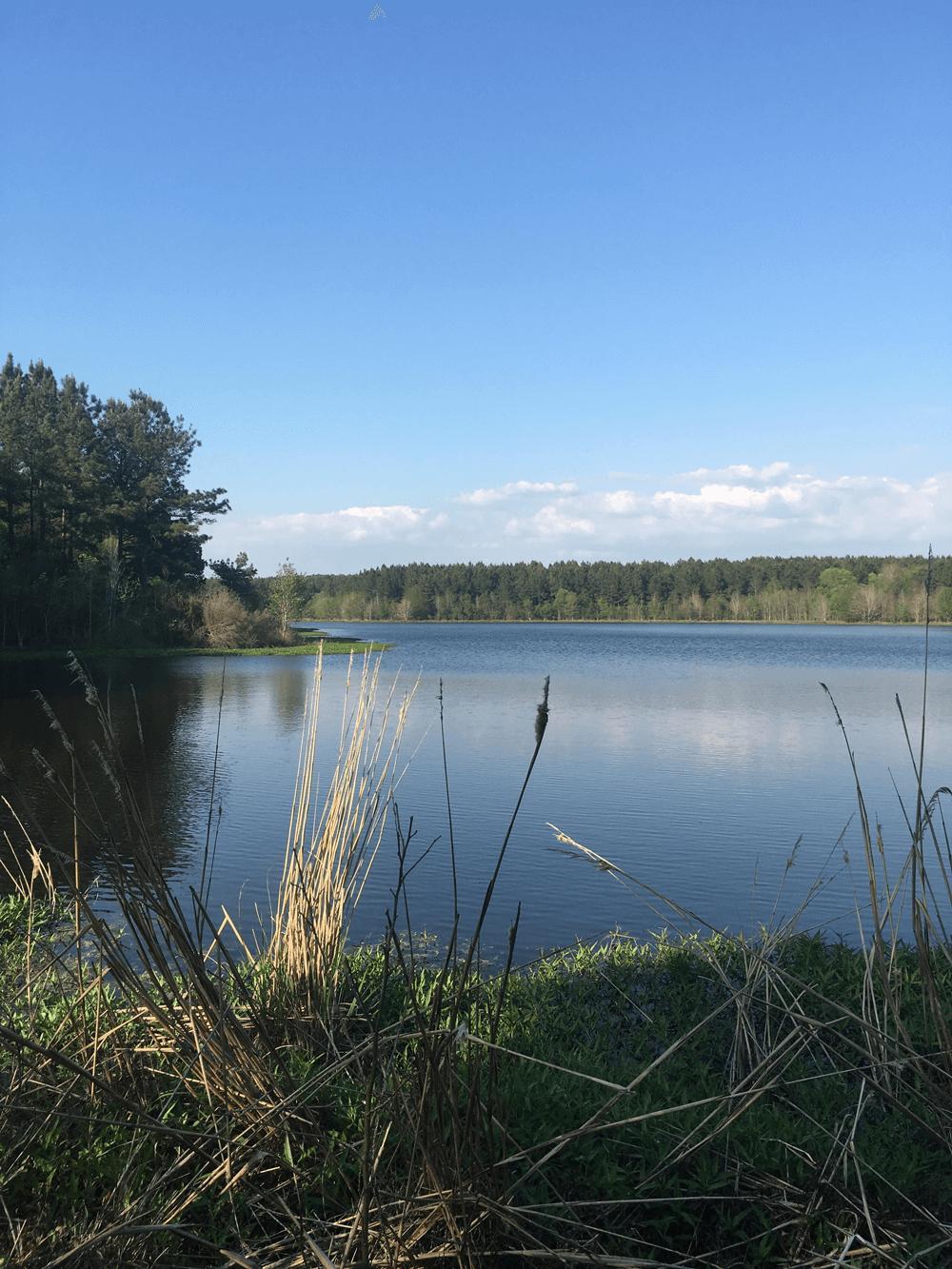 Whipstock | Lusco Outdoors