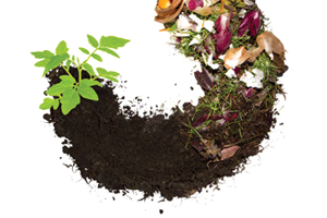 Four Benefits to Composting Food and Organic Waste
