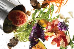 Reducing Waste Through Proper Composting