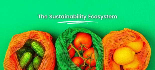 The Sustainability Ecosystem