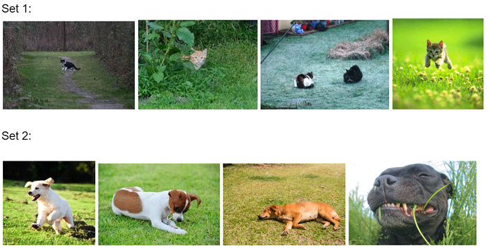 Two rows of pictures: the top has four photos of cats, the bottom row has four photos of dogs.
