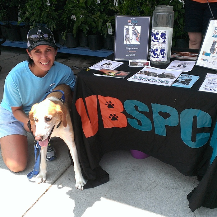 Virginia Beach SPCA_TheSOLution