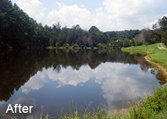 Agricultural_Private_Pond_Free_Union_VA_6.00_acres_AFTER_water_shield_treatments