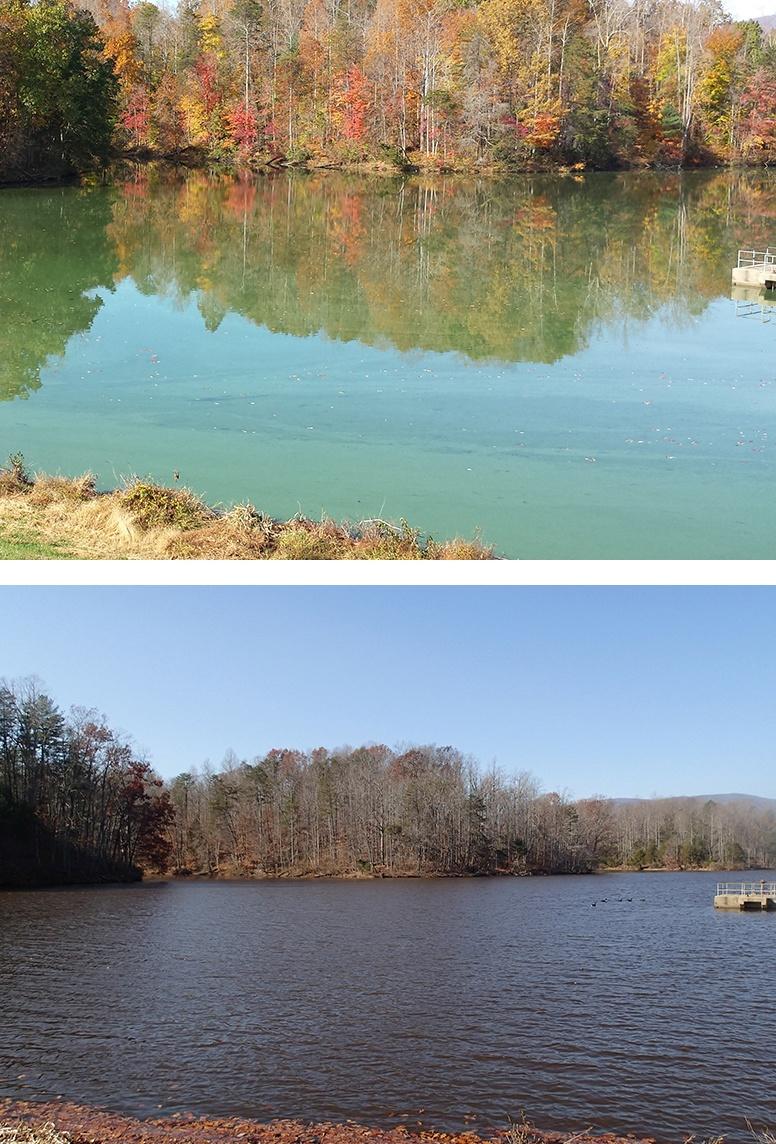 Beaver_Creek_Reservoir.10.28.14.Cyanobacteria_bloom_BEFORE__AFTER__treatment_c