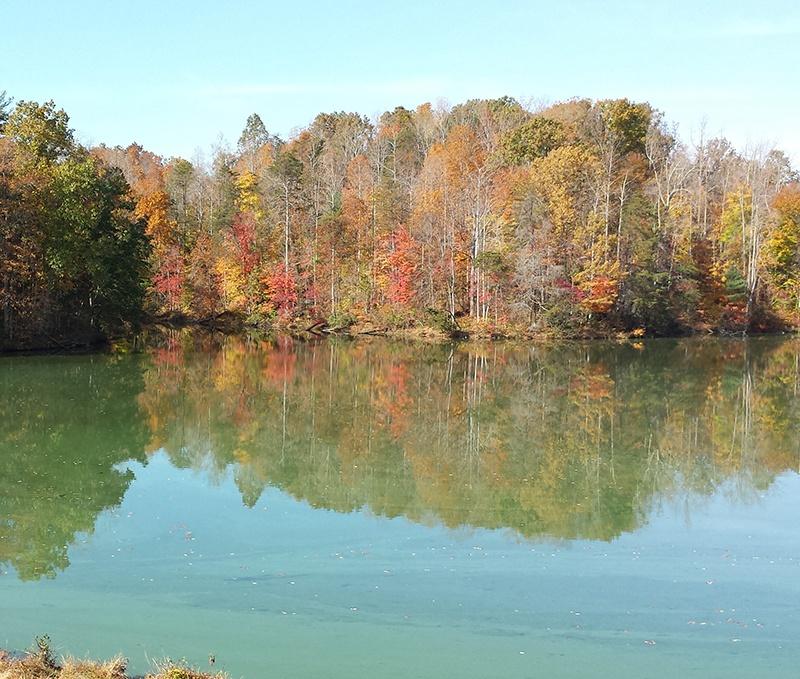 Beaver_Creek_Reservoir.10.28.14.Cyanobacteria_bloom_before_treatment_2_c-1