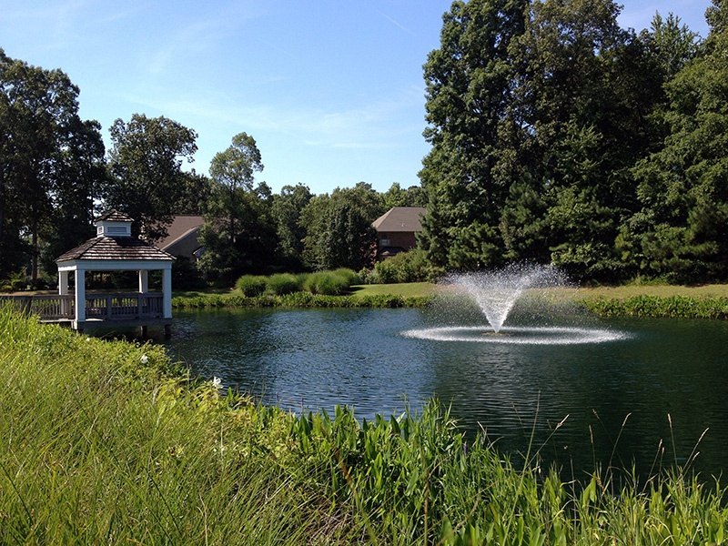 Beneficial Buffer - Fountain - Community Pond (16) - c