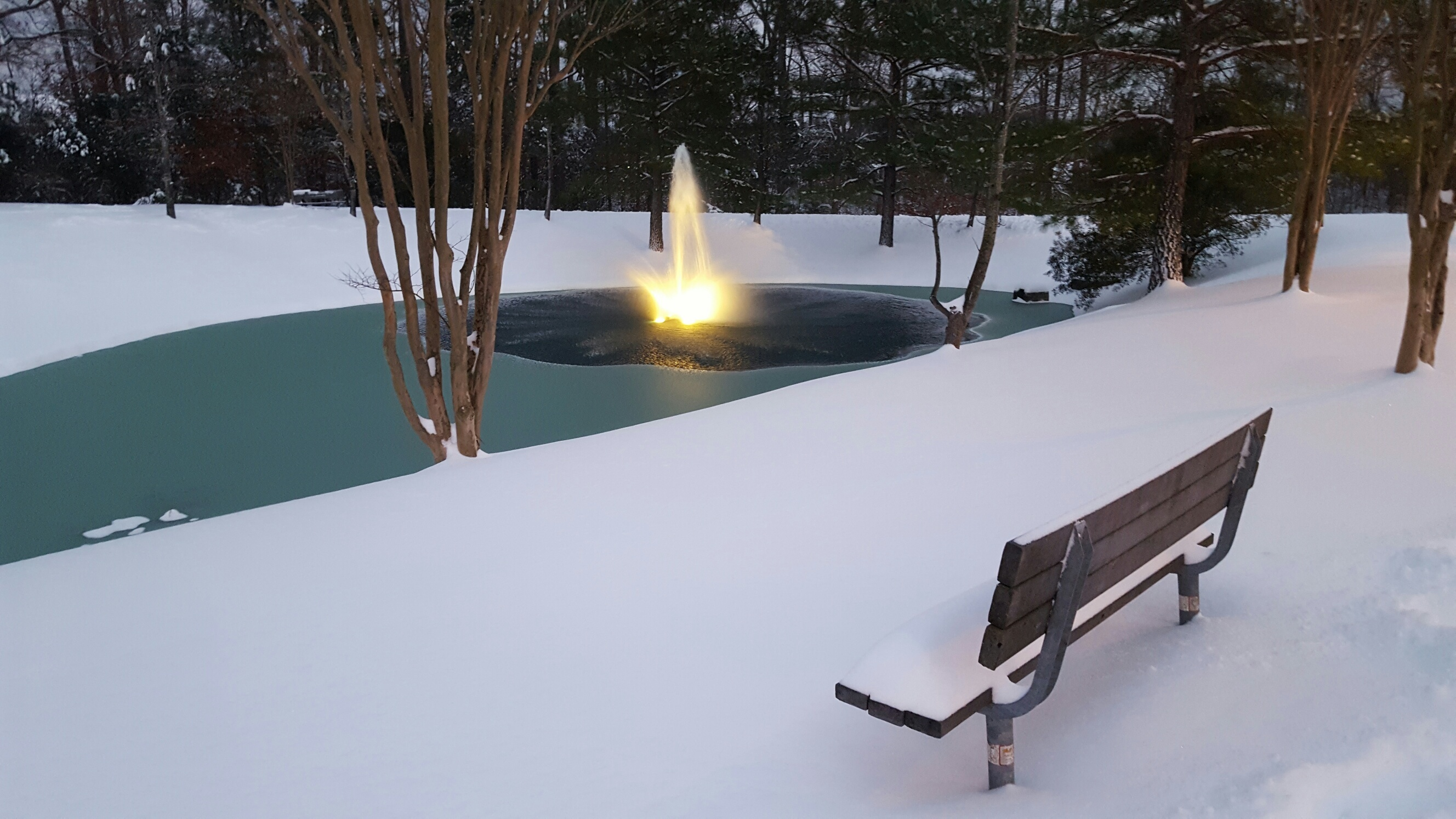Ice-covered pond