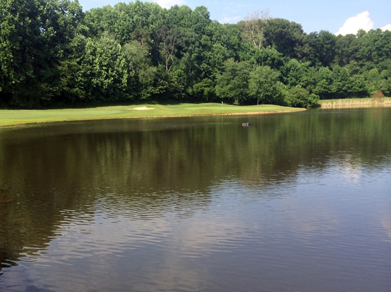 ChantillyVA.PenderbrookGC_after_water_chestnut_treatment_Dave_R_06.14_c
