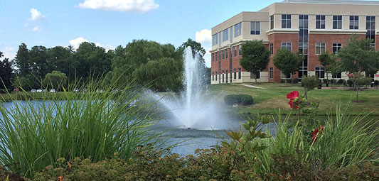 Commercial Development Lake and Pond Management