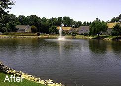 Community_Pond_Chesapeake_VA_1.0_acre_AFTER_Pithophora_algae-1