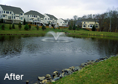Community_Stormwater_Pond_Loudoun_County_VA_1.0_acre_AFTER_algae_treatments