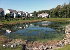 Community_Stormwater_Pond_Loudoun_County_VA_1.0_acre_BEFORE_algae_treatments